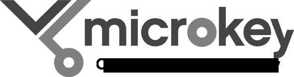 Mikrokey